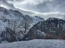 Sroga zima krajobraz Fotografia Royalty Free
