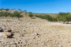 Srogi kamienisty krajobraz w Damaraland fotografia stock