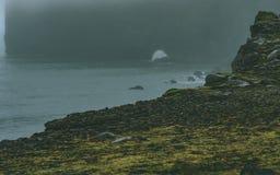 Srogi morze z wybrzeżem w Iceland z mnóstwo mgłą obrazy royalty free