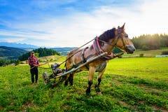Sromowce Wyzne, Polonia - - 27 agosto/2015; L'agricoltore coltiva il suolo con un cavallo in un'area montagnosa Immagini Stock Libere da Diritti