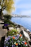 srping湖的码头 免版税图库摄影