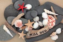 Srta. usted Imagen de archivo libre de regalías