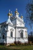 Ss Boris och Gleb Cathedral royaltyfria foton