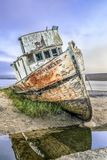 SS Point Reyes Shipwreck - Inverness, California Royalty Free Stock Photography