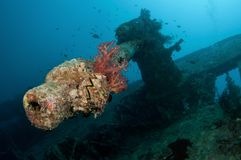 SS Thistlegorm battle gun Stock Photos