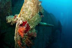 SS Thistlegorm battle gun Royalty Free Stock Photo