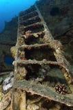 SS Thistlegorm Shipwreck Royalty Free Stock Image