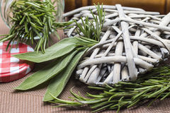 Ssage and rosemary leaves in a jar. Closeup of sage and rosemary leaves in a jar Royalty Free Stock Photos