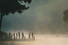 Ssanie w żołądku Ung, Jeziorny sosnowy lasu park Zdjęcie Stock