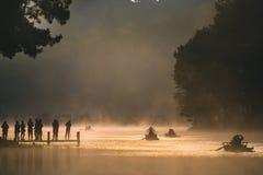 Ssanie w żołądku Ung, Jeziorny sosnowy lasu park Zdjęcie Royalty Free