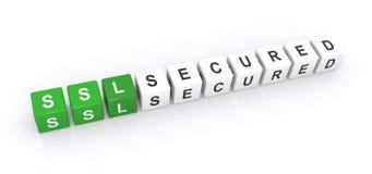 SSL gesichertes Zeichen Stockfotografie