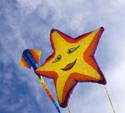 Sstingray and starfish kites Royalty Free Stock Photo