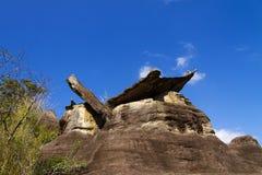 Sstone森林和蓝天 免版税图库摄影