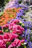 Städtische Gartenarbeit in der Stadt Stockfoto