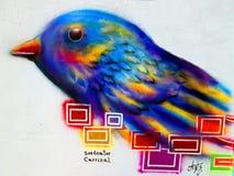 Städtische Kunst Carrizal-Saatfresser Stockbild