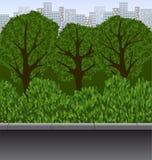 Städtische Landschaft mit Bäumen, Büschen und Gehweg Stockfoto