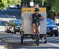 Städtische Lieferung Dreirad-Eco Lizenzfreies Stockbild