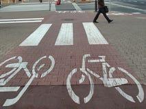 Städtische radfahrende Spur Lizenzfreies Stockfoto