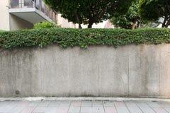 Städtische Straße des leeren Schmutzes mit Lagerbacksteinmauer Stockbild