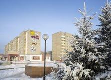 Städtische Winterlandschaft mit Pelzbäumen und Häusern Lizenzfreie Stockbilder