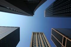 Städtischer Dschungel Stockbilder