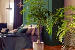 Städtischer Dschungel im modischen Schlafzimmer Innen mit gemütlichem Bett stockfoto