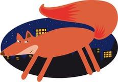 Städtischer Fox Lizenzfreies Stockfoto
