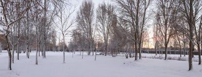 Städtischer Park mit Schnee an der Dämmerung Stockfotografie