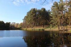 Städtischer See Stockbilder