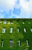 Städtisches Haus mit grünen Wänden stockbild