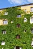 Städtisches Haus mit grünen Wänden Stockfotos