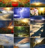 Ställ in av bakgrunder av naturen i fyra säsonger arkivbilder