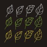Ställ in av bladben skissar på svart bakgrund royaltyfri illustrationer