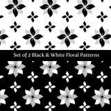 Ställ in av blom- svart 2 vektor illustrationer