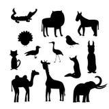 Ställ in av djura konturer isolerat stock illustrationer