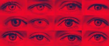 Ställ in av duotone för blått för skugga för ögonnärbild röd royaltyfria bilder