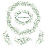 Ställ in av gröna blom- modeller, prydnader och vektorkransar av gröna sidor och vektorer för garnering Vårprydnadbegrepp royaltyfri illustrationer