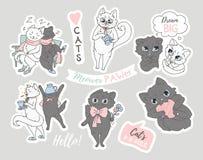 Ställ in av gulliga kattklotter på grå backround Roliga katter för tryck vektor illustrationer