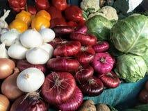 Ställ in av höstskördgrönsaker på bondens marknad: lökar kål, spansk peppar, blomkål, vitlök royaltyfri bild