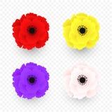 Ställ in av isolerad röd, gul, rosa purpurfärgad vallmosymbol Symbol av världskriget i modern stil Symbol av den brittiska minned stock illustrationer