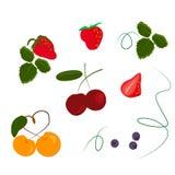 ställ in av körsbärsröda körsbärsröda älsklingblåbär för bär royaltyfri illustrationer
