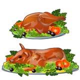 Ställ in av nytt grillat höna och griskött med grönsaker på en tjänande som platta som isoleras på vit bakgrund Objekt av vektor illustrationer