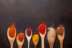 Ställ in av olika kryddor i skedar royaltyfri bild