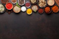 Ställ in av olika kryddor och örter royaltyfria bilder