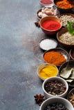 Ställ in av olika kryddor och örter arkivfoto