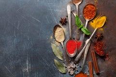 Ställ in av olika kryddor och örter royaltyfri bild