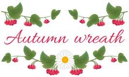 Ställ in av realistiska klungor av viburnumbär med sidor Röda bär och gröna sidor på en trädfilial Passande för vektor illustrationer