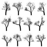 Ställ in av trädkonturer, för vektordesign för hand utdragna beståndsdelar royaltyfri illustrationer