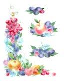 Ställ in av vattenfärg den blom- och fruktgirlanden arkivbilder