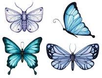 Ställ in av vattenfärgfjärilar och malar av blåa signaler fotografering för bildbyråer